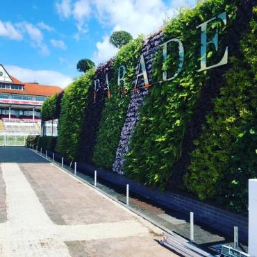 New Wonderwall Installation at Chester Races